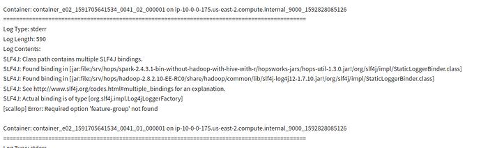 Screenshot_2020-06-22 Hopsworks